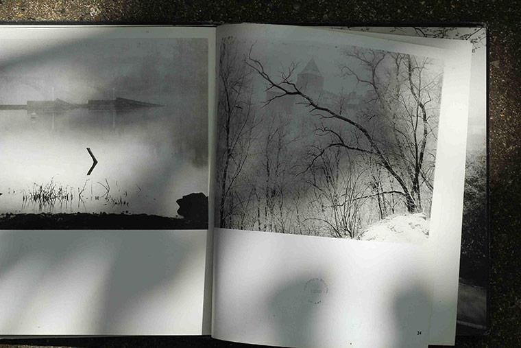 Sudek's Trees V